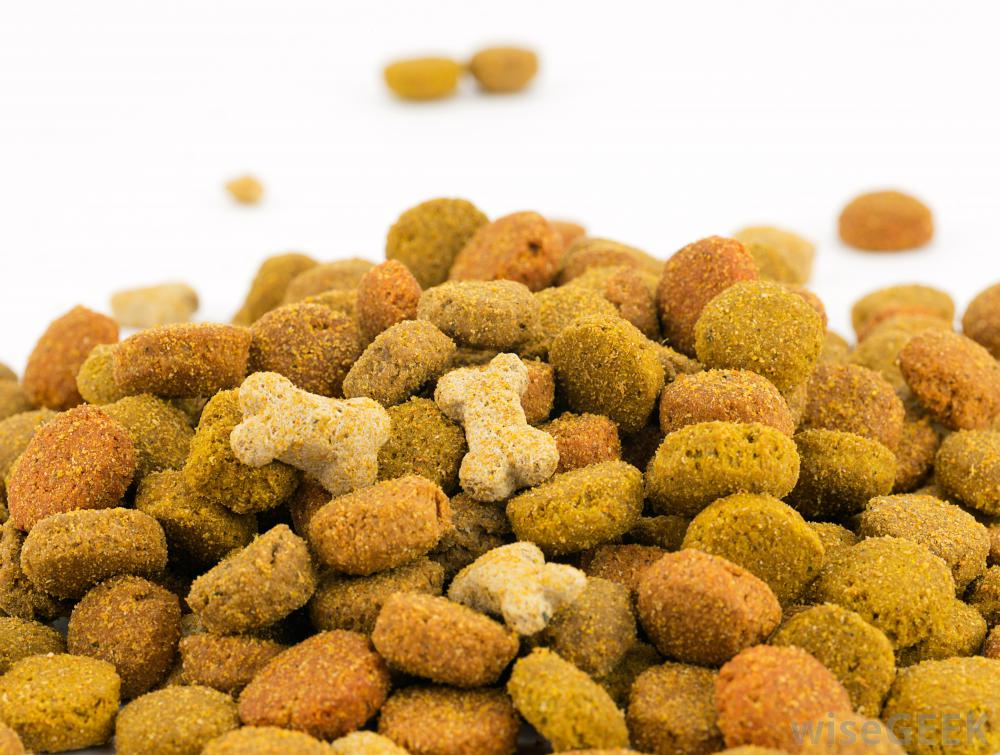 smakey dog foods inc Smakey dog foods discuss how the sec has influence (if any) over the audit of smackey dog foods, inc the securities and exchange commission has a significant influence on the audit of smackey dog foods, inc.
